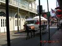 new_orleans_24