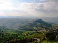 Calacibetta